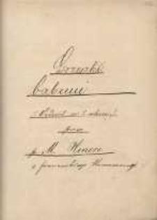 Grzeszki babuni. Vodevil w 1. akcie przez p. M. Honore z francuskiego tłumaczony