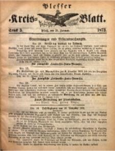 Plesser Kreis-Blatt, 1873, St. 5