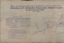 Głubczyce. Plan sytuacyjny bocznicy kolejowej z 1980 r.