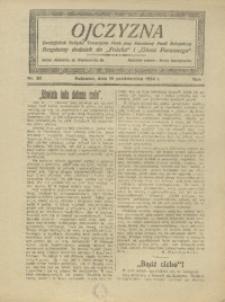 Ojczyzna, 1924, R. 2, nr 20