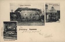 Brzeżany. Zamek Sieniawskich, kościół zamkowy Sieniawskich i pomnik Sieniawskich, 1916 r.