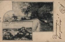 Brzeżany. Panorama miasta i grobla, 1901 r.