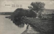 Brzeżany. Widok Złotej Lipy, 1916 r.