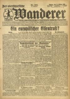 Der Oberschlesische Wanderer, 1920, Jg. 93, Nr. 235