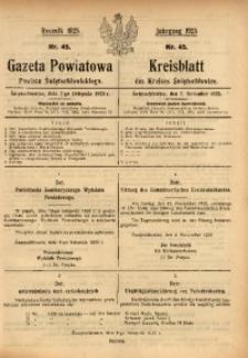 Gazeta Powiatowa Powiatu Świętochłowickiego, 1925, nr 45