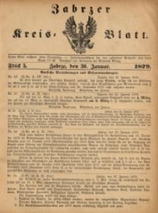Zabrzer Kreis-Blatt, 1879, St. 5