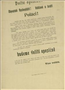 Odezwa czeska przed wyborami gminnymi w Rychwałdzie skierowana do Polaków, przeciw polskim kandydatom