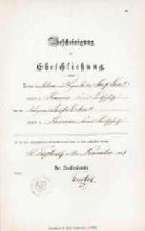 Akt zawarcia małżeństwa z 20.02.1894 r.