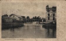 Brzeżany. Młyn na stawie, 1880 r.