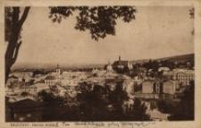 Brzeżany. Panorama miasta, 1889 r.