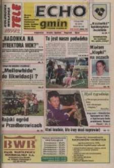 Echo Gmin : tygodnik regionalny : Bierawa, Cisek, Kędzierzyn-Koźle, Pawłowiczki, Polska Cerekiew, Reńska Wieś, Zdzieszowice 1998, nr 28 (45).