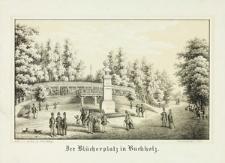 Pomnik Gebharda Leberechta von Blüchera w Lwówku Śląskim