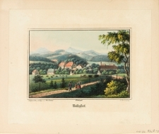 Panorama wsi Wolany