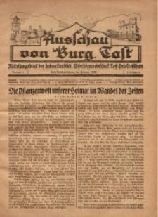 Ausschau von Burg Tost, 1928, Jg. 3, Nr. 1