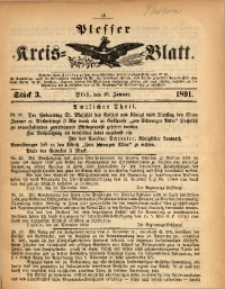 Plesser Kreis-Blatt, 1891, St. 3