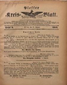 Plesser Kreis-Blatt, 1913, St. 3