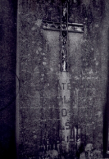 """Brzeżany. Cmentarz z pomnikiem """"Bohaterom walk o Polskę"""". Rok 1966."""