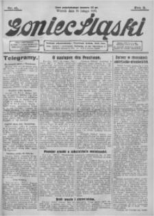 Goniec Śląski, 1929, R. 9, nr 41