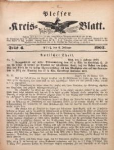 Plesser Kreis-Blatt, 1903, St. 6