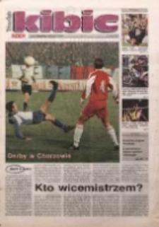 Kibic, 1999, 29.05