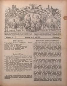 Katholisches Sonntagsblatt der Diöcese Breslau, 1899, Jg. 5, nr 28