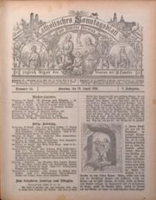 Katholisches Sonntagsblatt der Diöcese Breslau, 1899, Jg. 5, nr 34
