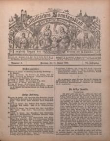 Katholisches Sonntagsblatt der Diöcese Breslau, 1900, Jg. 6, nr 3