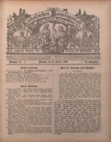 Katholisches Sonntagsblatt der Diöcese Breslau, 1900, Jg. 6, nr 42