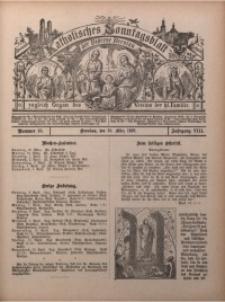Katholisches Sonntagsblatt der Diöcese Breslau, 1902, Jg. 8, nr 13