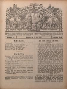 Katholisches Sonntagsblatt der Diöcese Breslau, 1902, Jg. 8, nr 14