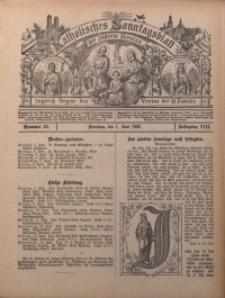 Katholisches Sonntagsblatt der Diöcese Breslau, 1902, Jg. 8, nr 22