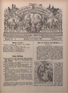 Katholisches Sonntagsblatt der Diöcese Breslau, 1902, Jg. 8, nr 42