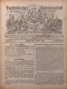 Katholisches Sonntagsblatt der Diöcese Breslau, 1910, Jg. 16, nr 41