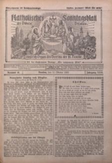 Katholisches Sonntagsblatt der Diöcese Breslau, 1925, Jg. 31, nr 41