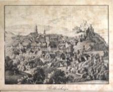 Der Schlesische Stadt- und Land-Bote, 1833, Jg. 1, H. 19