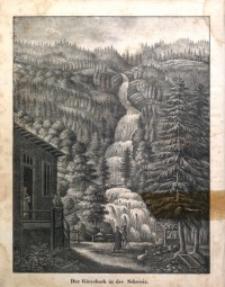 Der Schlesische Stadt- und Land-Bote, 1833, Jg. 1, H. 24