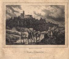 Kinau im Schlesierthal. Widok nieistniejącej obecnie Śląskiej Doliny z zamkiem Grodno w Zagórzu Śląskim