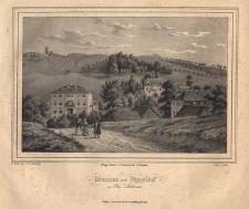 Brunnen und Pappelhof zu Ober Salzbrunn. Dom zdrojowy w Szczawnie–Zdroju