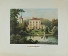 Pałac w Lubiechowej