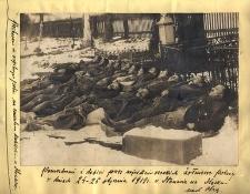 Pomordowani i dobici przez najeźdźców czeskich żołnierze polscy w dniach 24-26 stycznia 1919 r. w Stonawie na Śląsku nad Olzą
