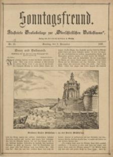 Sonntagsfreund, 1896, Nr. 45