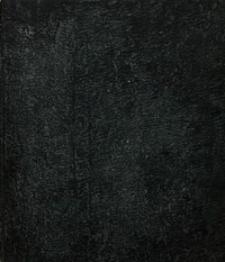 Sach-Register, oder alphabetische Darstellung der, in den Amtsblättern der Königlichen Regierung in Oppeln für das Jahr 1855 enthaltenen Verordnungen und Bekanntmachungen