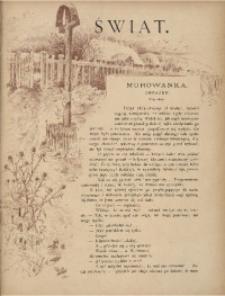 Świat. Dwutygodnik ilustrowany, 1888, R. 1, Nr 2