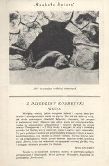 Naokoło świata, 1926, nr 27
