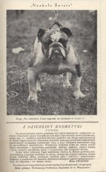 Naokoło świata, 1926, nr 31