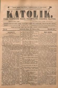 Katolik, 1882, R. 15, nr 22