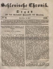 Schlesische Chronik, 1843, Jg. 8, No. 43
