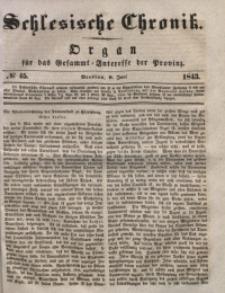 Schlesische Chronik, 1843, Jg. 8, No. 45
