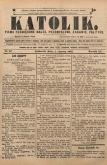 Katolik, 1882, R. 15, nr 42