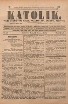 Katolik, 1882, R. 15, nr 45